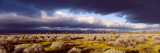 Clouds, Mojave Desert, California, USA Wall Decal by  Panoramic Images