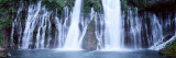Water, Cascading, Mcarthur Burney Falls, California, USA Wall Decal by  Panoramic Images