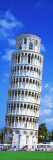 Tower of Pisa, Tuscany, Italy Wall Decal by  Panoramic Images