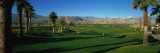 Golf Course, Desert Springs, California, USA Wallstickers af Panoramic Images,