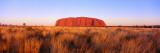 Ayers Rock, Uluru-Kata Tjuta National Park, Australia Wall Decal by  Panoramic Images