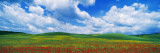 Open Field, Hill, Clouds, Blue Sky, Tuscany, Italy Autocollant mural par Panoramic Images