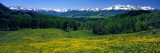 San Miguel Mountains in Spring, Colorado, USA Wallsticker af Panoramic Images,