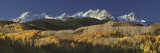 Autumnal View of Aspen Trees and the Rocky Mountains, San Juan National Park, Colorado, USA Wallstickers af Panoramic Images,