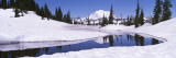 Snow on a Landscape, Mt. Rainier, Mt. Rainier National Park, Washington State, USA Wall Decal by  Panoramic Images