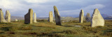 Callanish Stones, Isle of Lewis, Outer Hebrides, Scotland, United Kingdom Wall Decal by  Panoramic Images