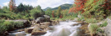 River Flowing Through Rocks, Ausable River, Wilmington, New York State, USA Wall Decal by  Panoramic Images