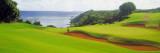 Princeville Golf Course, Kauai, Hawaii, USA Veggoverføringsbilde av Panoramic Images,