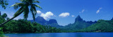 Lush Foliage and Rock Formations, Moorea Island, Tahiti Wall Decal by  Panoramic Images