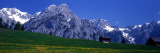 Field of Wildflowers with Majestic Mountain Backdrop, Karwendel Mountains, Austria Wall Decal by  Panoramic Images