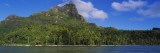 Palm Trees on the Beach, Bora Bora, French Polynesia Wall Decal by  Panoramic Images