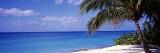 7 Mile Beach, West Bay, Caribbean Sea, Cayman Islands Autocollant par  Panoramic Images