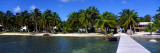 View of Beachfront from Pier, Caye Caulker, Belize Wall Decal by  Panoramic Images