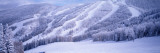 Mountains, Snow, Steamboat Springs, Colorado, USA Wall Decal by  Panoramic Images