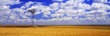 Windmill Wheat Field, Othello, Washington State, USA Wall Decal by  Panoramic Images