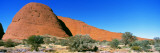The Olgas, Australia Wall Decal by  Panoramic Images