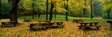 Robert Treman State Park, New York State, USA Wall Decal by  Panoramic Images