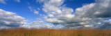 Hayden Prairie, Iowa, USA Wall Decal by  Panoramic Images