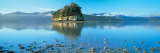 Marlborough Sound, New Zealand Wall Decal by  Panoramic Images