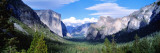 Yosemite National Park, California, USA Wall Decal by  Panoramic Images