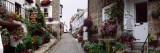 Saint Ives Street Scene, Cornwall, England, United Kingdom Wallstickers af Panoramic Images,