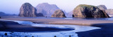 Sea Stacks, Myers Creek Oregon, USA Wall Decal by  Panoramic Images