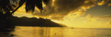 Silhouette of Palm Trees at Dusk, Cooks Bay, Moorea, French Polynesia Wall Decal by  Panoramic Images