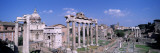 Roman Forum, Rome, Italy Wall Decal by Panoramic Images
