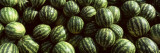 Close-up of Watermelons, Eger, Eastern Hungary Decalcomania da muro di Panoramic Images,