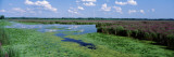 Wetlands, New York State, USA Wall Decal by  Panoramic Images
