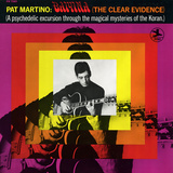 Pat Martino - Baiyina (the Clear Evidence) Wall Decal