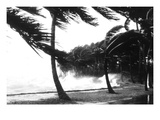 Hurricane Waves Strike the Seawall Wall Decal