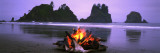 Bonfire on the Beach, Point of the Arches, Shi-Shi Beach, Washington State, USA Autocollant mural par  Panoramic Images