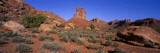Valley of the Gods, Utah, USA Wall Decal by  Panoramic Images
