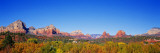 Red Rocks, Sedona Arizona, USA Wall Decal by  Panoramic Images