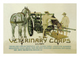 Veterinary Corps. U.S. Army Wall Decal by Schreck 
