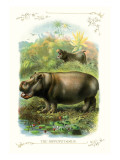 The Hippopotamus Wall Decal