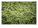 Green Beans Wall Decal by Ken Hammond