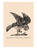 Optical Illusion Puzzle: The Hawk and Rabbit Wall Decal