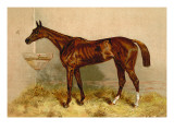 Emblem, Steeplechase Mare Wall Decal by Samuel Sidney