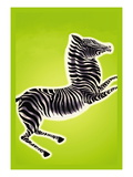 Zebra Wall Decal by Frank Mcintosh