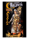 Samri S. Baldwin, The White Mahatma and a Superb Company Wall Decal