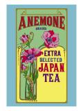 Anemone Brand Tea Wandtattoo