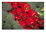 Red Peppers Wall Decal by Ken Hammond