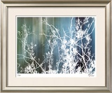 Cool Rain Limited Edition Framed Print by M.J. Lew