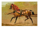 State Carriage Horse Wall Decal by Samuel Sidney