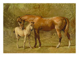 Thoroughbred Mare and Foal Wall Decal by Samuel Sidney