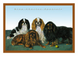King Charles Spaniels Wall Decal