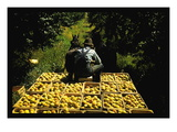 Hauling Crates of Peaches Wall Decal by Russell Lee