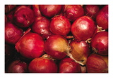 Red Onions Wall Decal by Ken Hammond